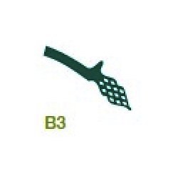 PREFORMES PLASTIF. B3, La plaquette