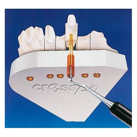 CROSSPINS Avec Gaines (x1000)