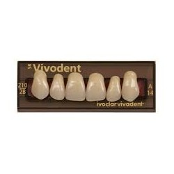 Dents SR Vivodent