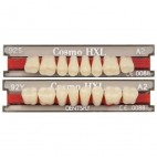 Dents Cosmo HXL Dentsply