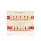Dents Vitapan